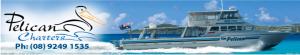 pelican_header_charter